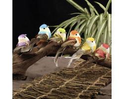 Набор птиц для декора, украшения, поделок (6 шт.)