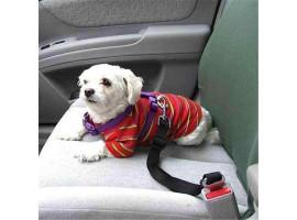 Автомобильный ремень безопасности для собак