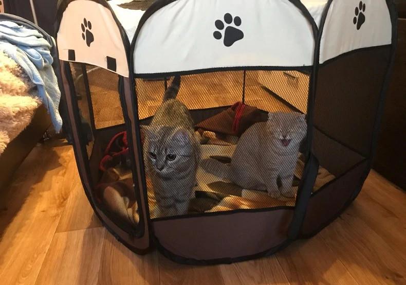Складной домик для кошки с котятами